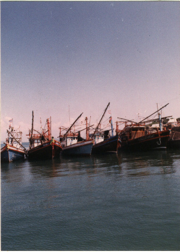 harbor photo